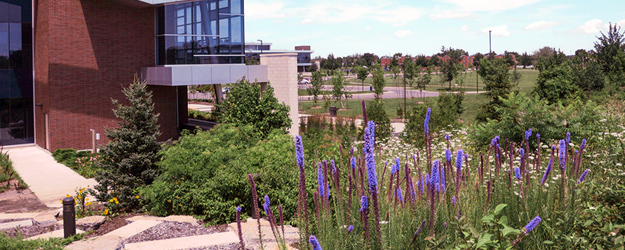 A view of the Welland Campus from the public walking trail